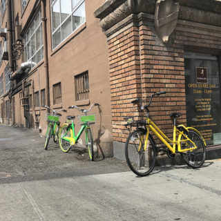 Q&A: Can private bike sharing change the course of road design?