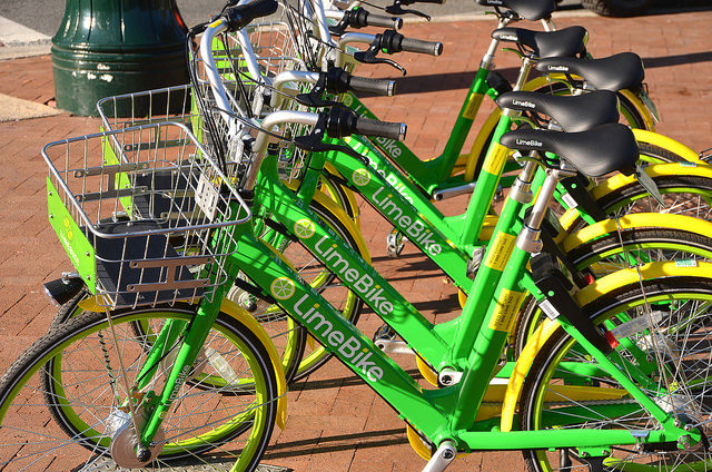 Lime bike share