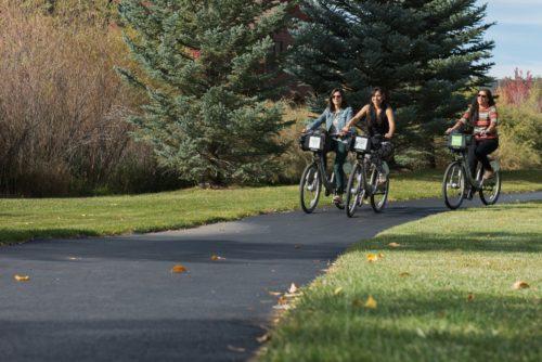 Basalt bicyclist nature